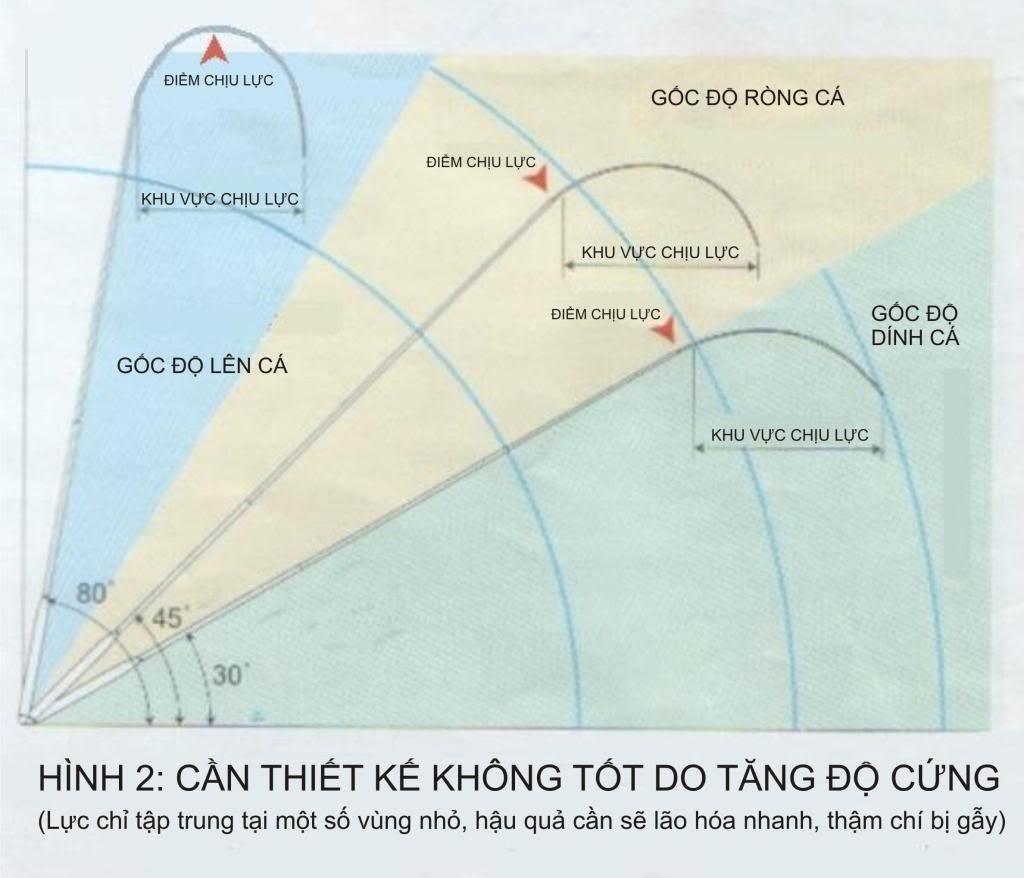 Hướng Dẫn Sử Dụng Cần Câu Máy Lure Cá Chuẩn  LongAnhVlogs ...