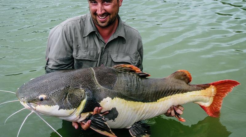Coarse fishing in Vietnam