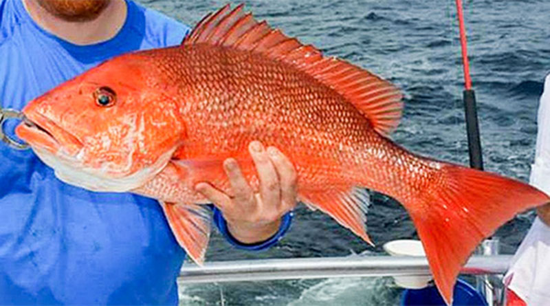 Fishing in Nha Trang